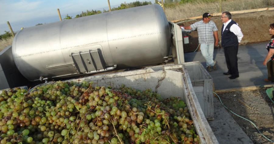 Resultado de imagen para Cooperativa de Quillón instala nueva planta de vinificación