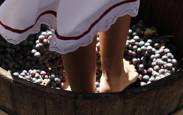 La discusión - Fiesta de la Vendimia parte este viernes en Chillán